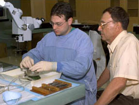NYEE Microsurgical Dissection Laboratory