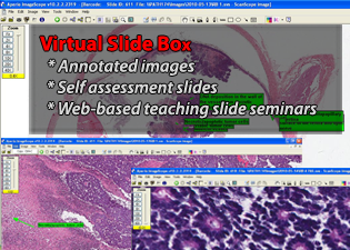aperio virtual slide box